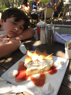 Overload of key lime pie in Key West. We had to try a slice everywhere we ate